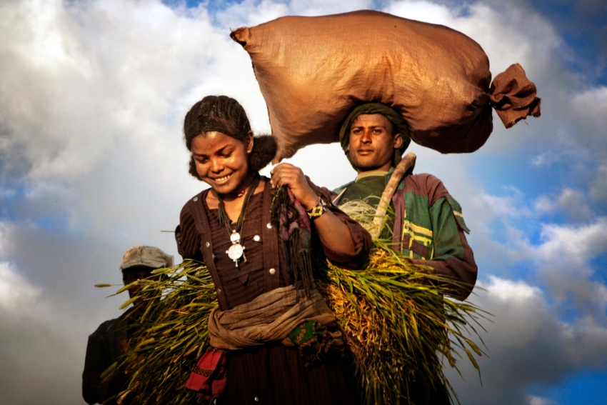 Die Bevölkerung in Midda ist ländlich geprägt.