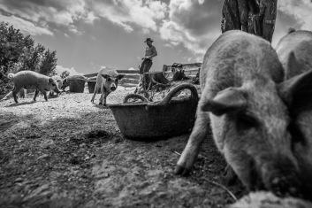 Ranchlife in Bulgaria
